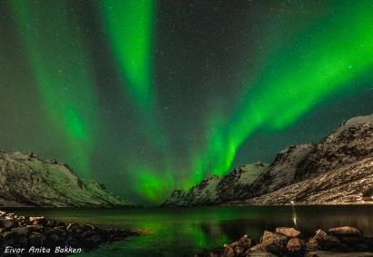 Nordlyset i Ersfjordbotn