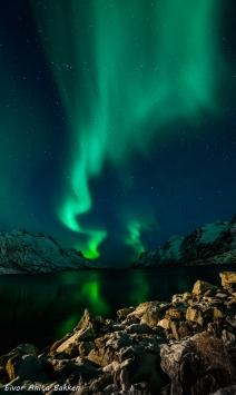 Nordlyset speiler seg i fjorden