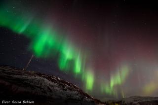 Nordlyset danser, Ersfjordbotn.