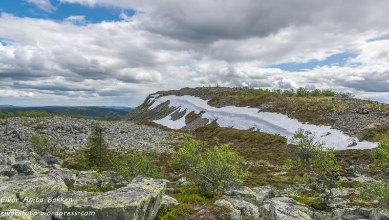 Utsikt fra Skagsvola.