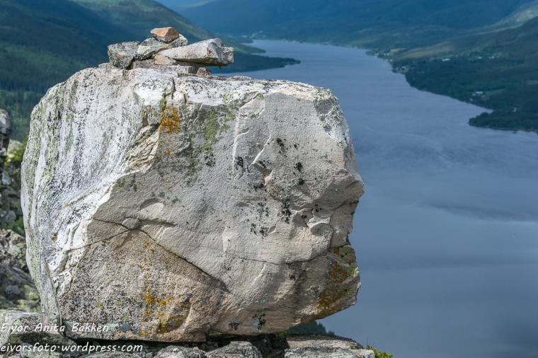 En blant mange steiner på Skagsvola.