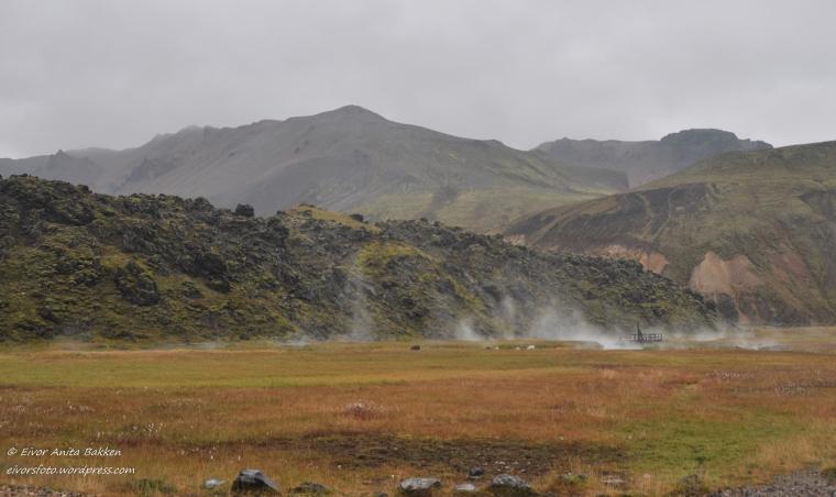 Damp fra varme kilder i Landmannalaugar.
