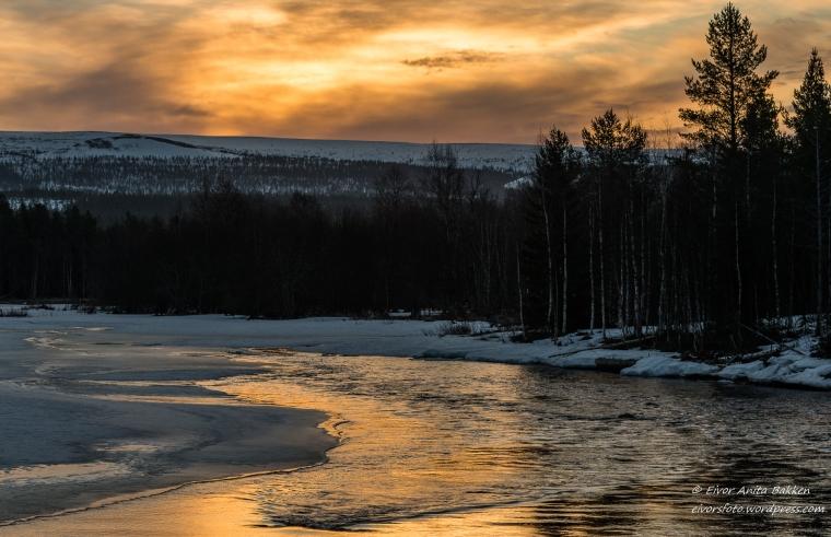 Morgengry ved Ljøra.