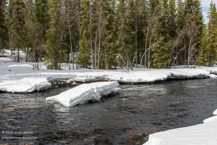 Stort isflak i Ljøra.